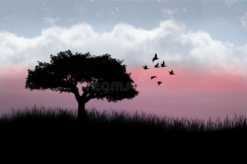 Arbre et oiseaux silhouettés photographie stock libre de droits