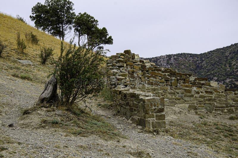 Arbre et ruines dans une ancienne forteresse Archéologie et fouilles photographie stock libre de droits