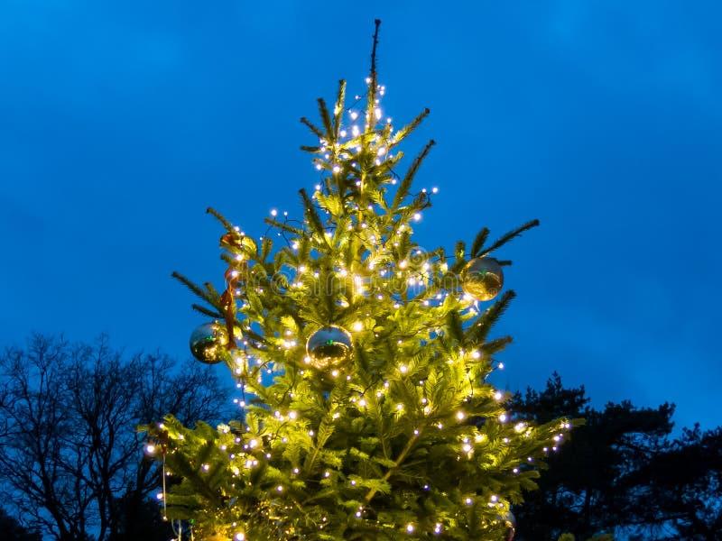 Arbre extérieur de Noël au crépuscule image stock