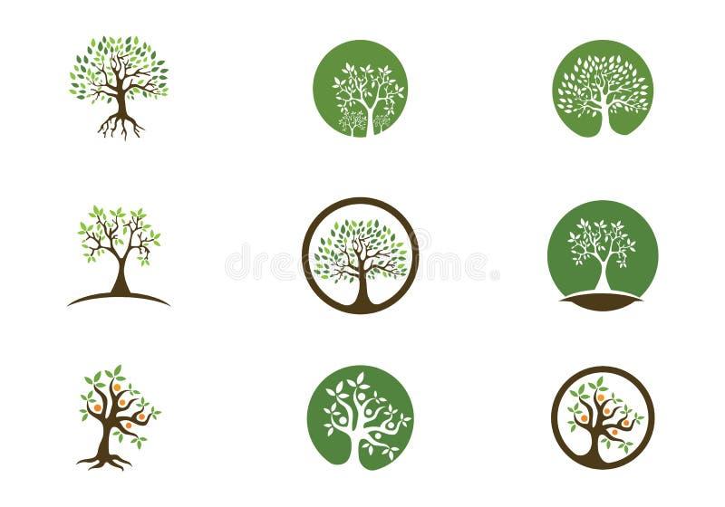 Arbre Logo Template d'Eco illustration libre de droits