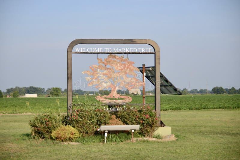 Arbre marqué Arkansas le comté de Poinsett photos libres de droits