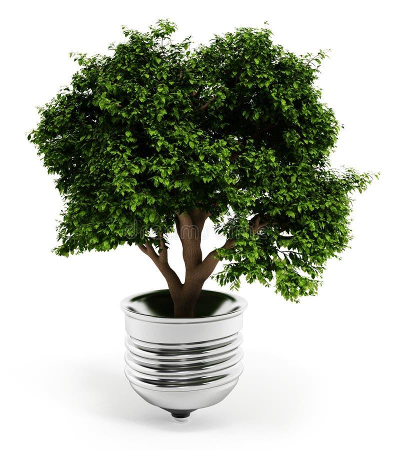 Arbre se tenant à l'intérieur de l'ampoule d'isolement sur le fond blanc illustration 3D illustration libre de droits