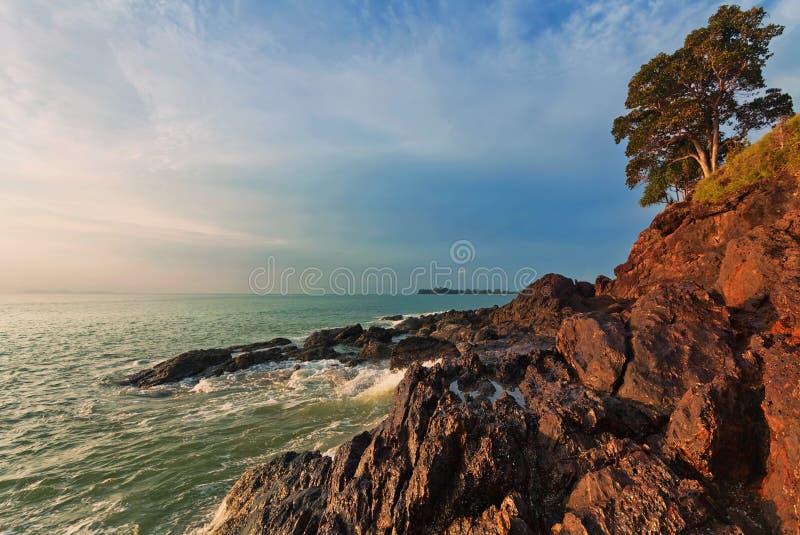Arbre sur des roches dans le coucher du soleil photographie stock