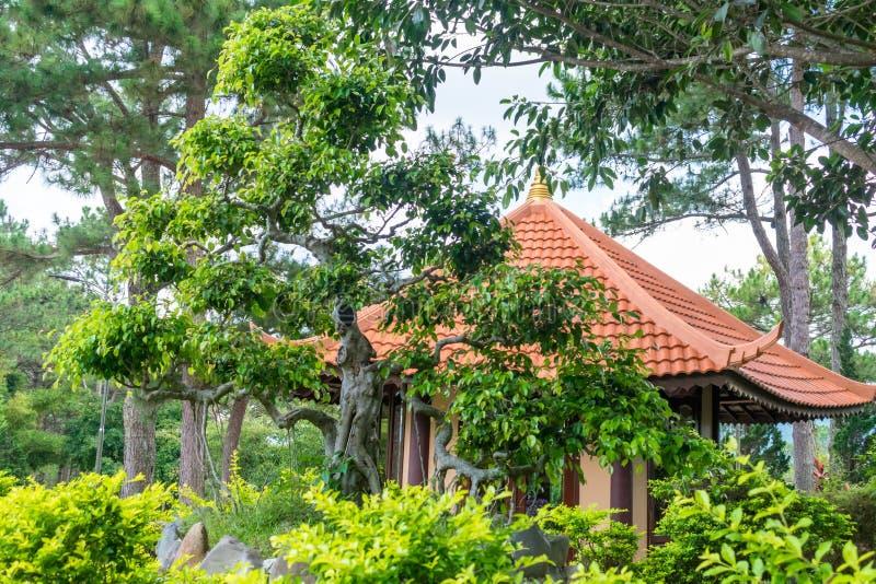 Arbre tropical sans compter qu'au bâtiment avec les tuiles et le toit chinois rouge au Vietnam photos stock