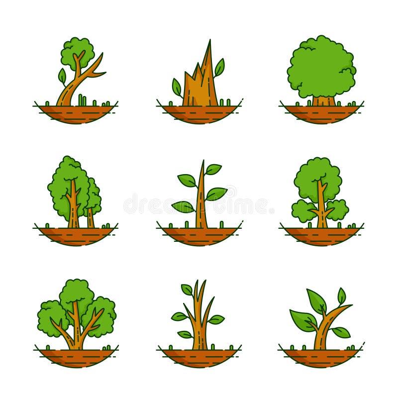 Arbre, usine, forêt, nature, illustration botanique, collection d'arbres illustration stock