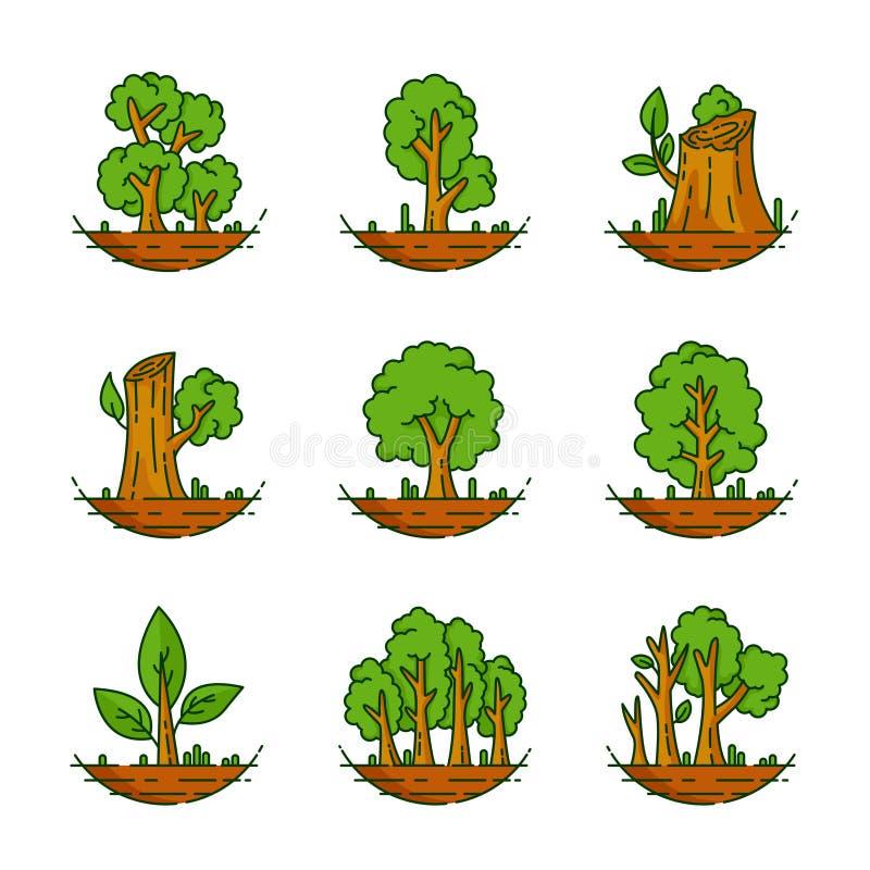 Arbre, usine, forêt, nature, illustration botanique, collection d'arbres illustration de vecteur