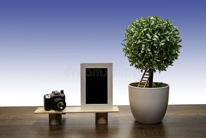 Arbre vert de buisson dans le pot de fleurs blanc avec la vue et l'appareil-photo de photo photographie stock libre de droits