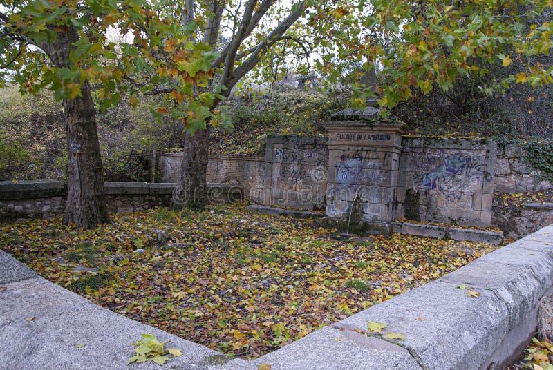 Arbres antiques de jaunes de pierre de source d'eau images stock