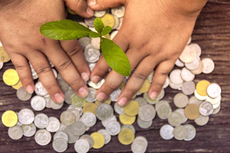 Arbres avec l'argent, enregistrant l'argent et ?levant des mains image stock