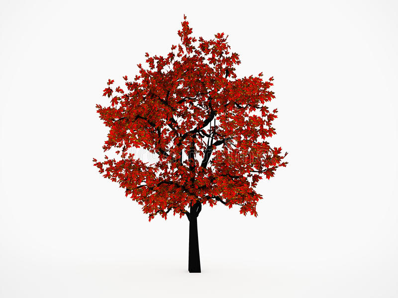 arbres avec la feuille rouge illustration stock illustration du centrale brun 31967933. Black Bedroom Furniture Sets. Home Design Ideas