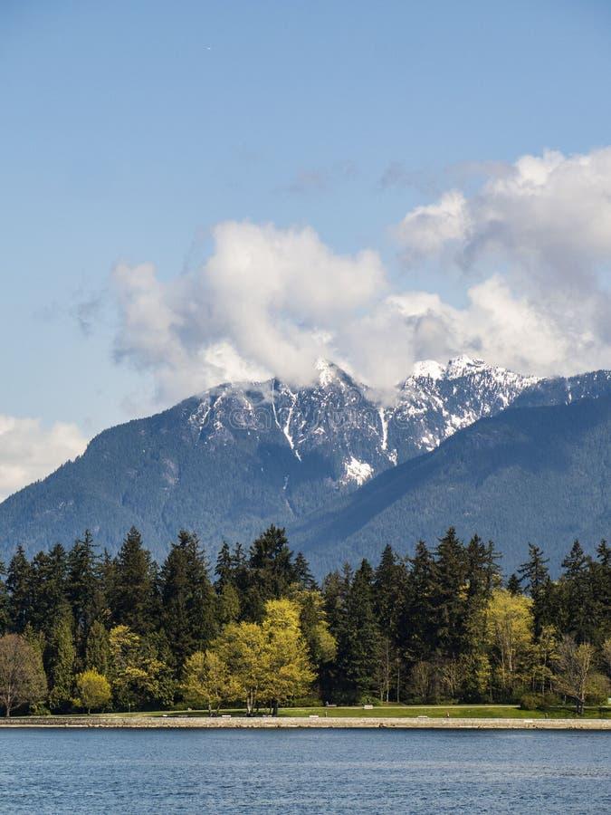 Arbres avec la montagne neigeuse à l'arrière-plan à Vancouver photo stock