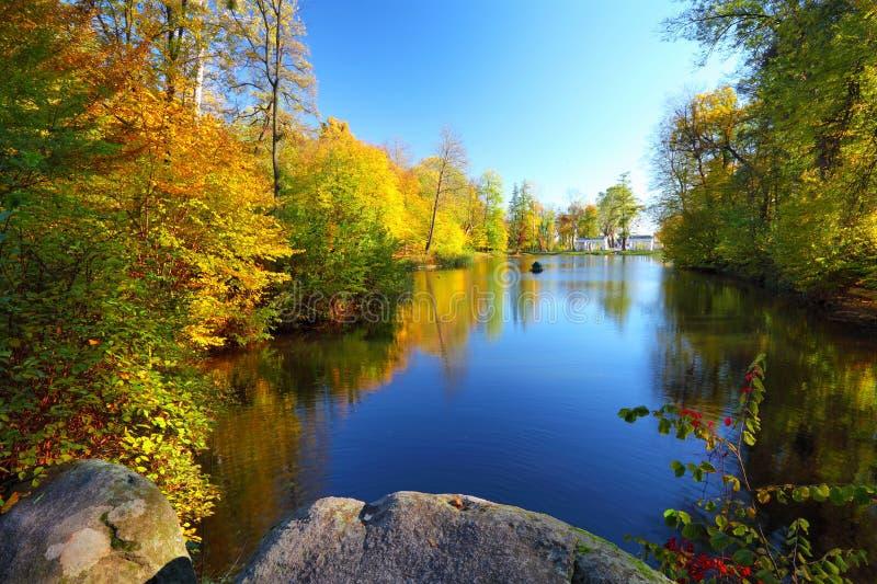 Arbres colorés d'automne près de la rivière photographie stock