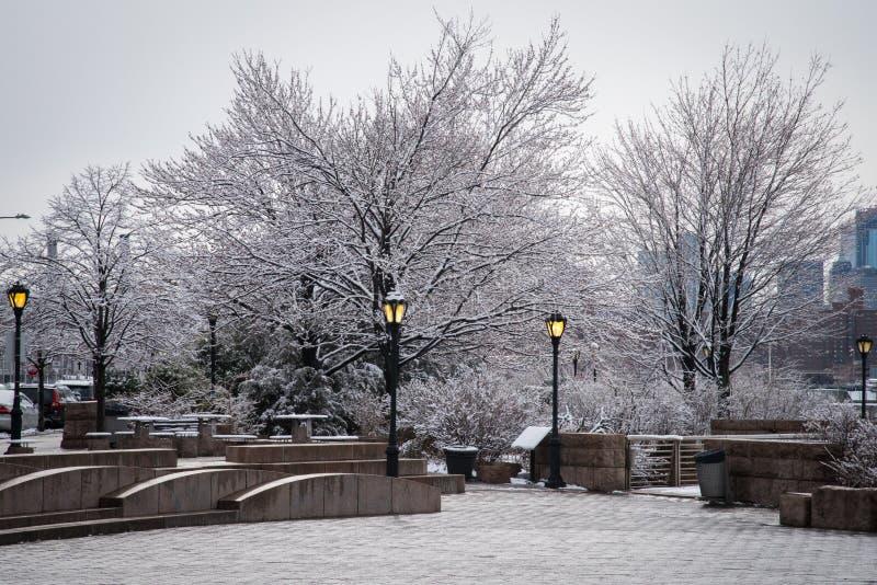 Arbres couverts de neige en parc dans l'†«New York de ville du Long Island photo libre de droits