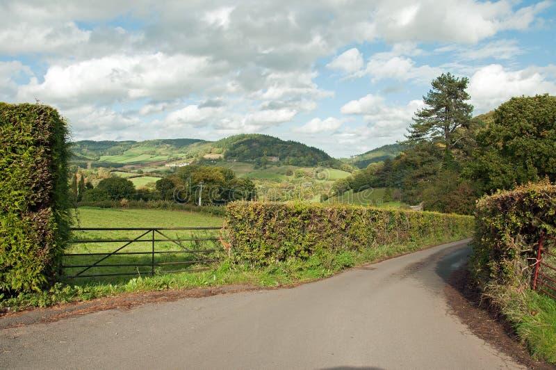 Arbres d'automne et ruelle de pays autour de la forêt de doyen dans la campagne anglaise photo libre de droits