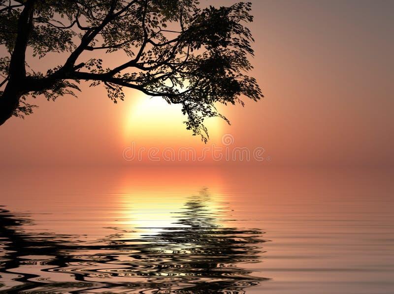 Arbres de coucher du soleil illustration stock