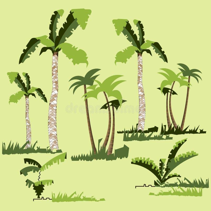 Arbres de jungle de forêt tropicale, usines, arbustes et buissons, palmiers tordus, herbe Conception plate de vecteur à la mode illustration de vecteur