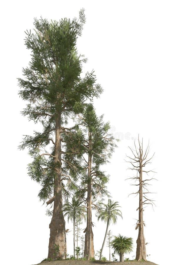 Arbres de l'ère mésozoïque d'isolement sur l'illustration blanche du fond 3D illustration libre de droits