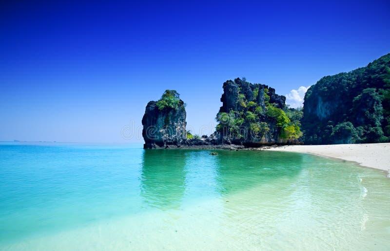arbres de la Thaïlande d'île de hong de falaises photo stock
