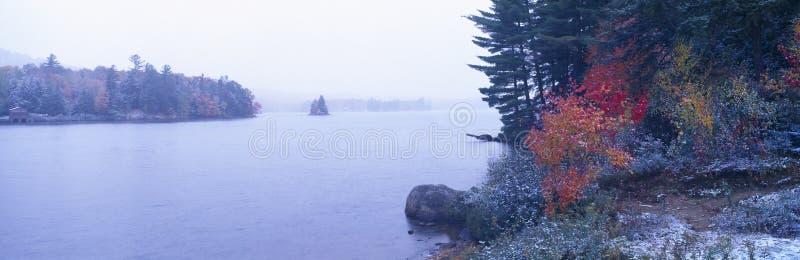 Arbres de neige et d'automne, photo libre de droits