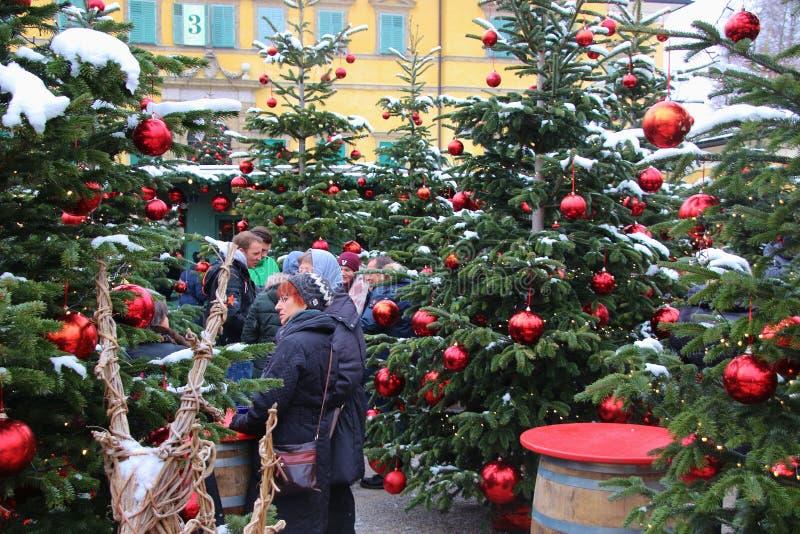 Arbres de Noël décorés au marché de Noël du palais de Hellbrunn Salzbourg, Autriche photo stock