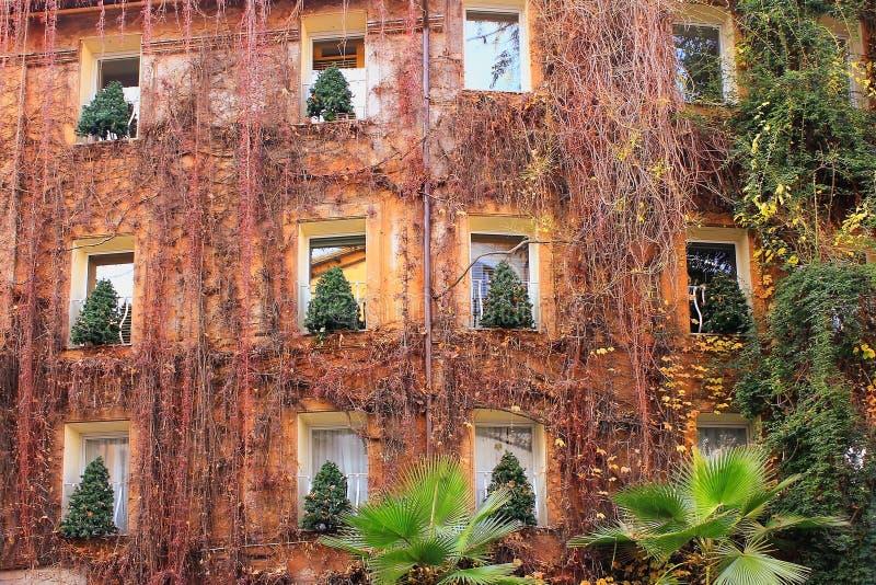 Arbres de Noël dans les fenêtres de la maison à Rome photos stock