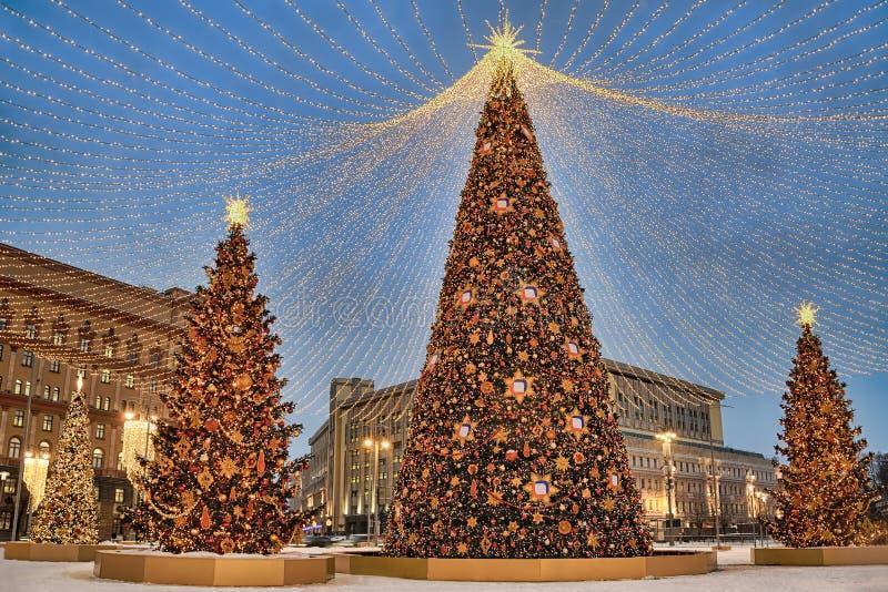 Arbres de Noël sous l'auvent des lumières chez Lubyanka au crépuscule photographie stock libre de droits