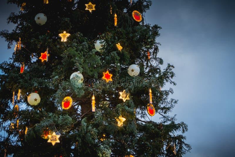 Arbres de Noël sur la place centrale de Strasbourg photo stock