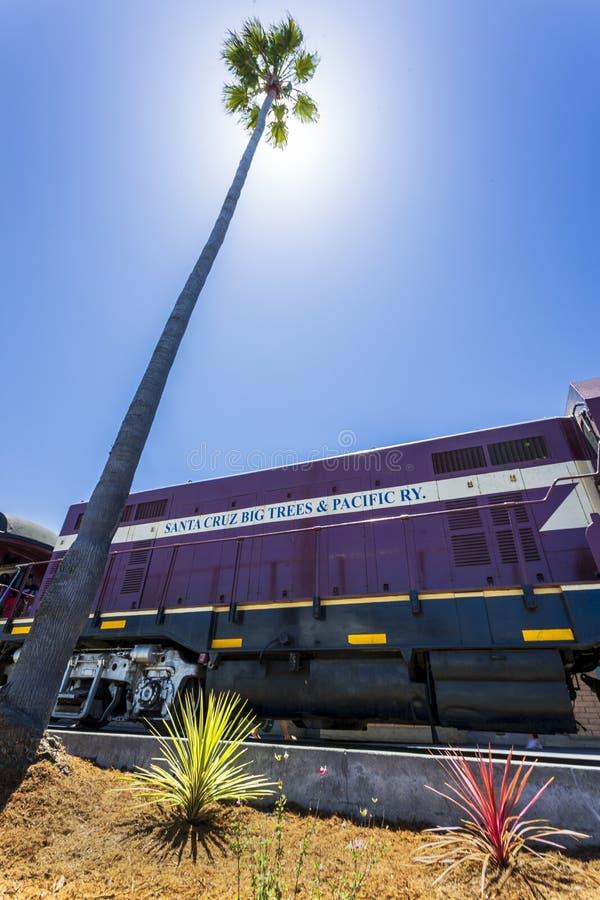 Arbres de Santa Cruz Big et train ferroviaire Pacifique, Santa Cruz, la Californie, Etats-Unis d'Amérique, Amérique du Nord images stock