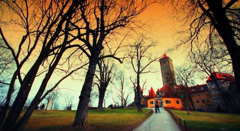 Arbres en parc à la vieille ville photos libres de droits