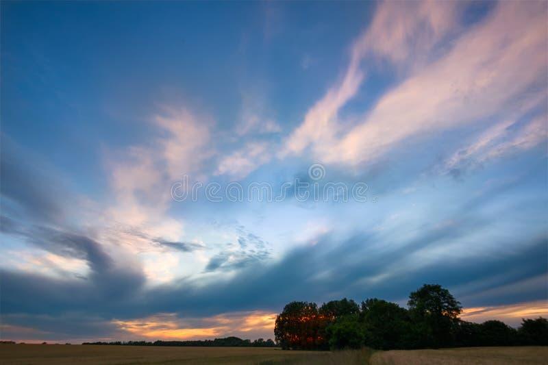 Arbres et ciel après coucher du soleil image stock