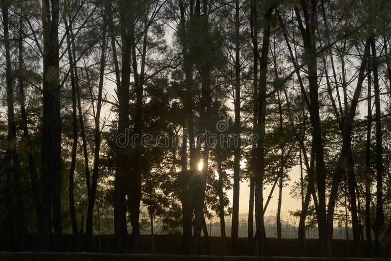 Arbres et coucher du soleil en pagoda de Linh Mu dans Huê au Vietnam photos stock