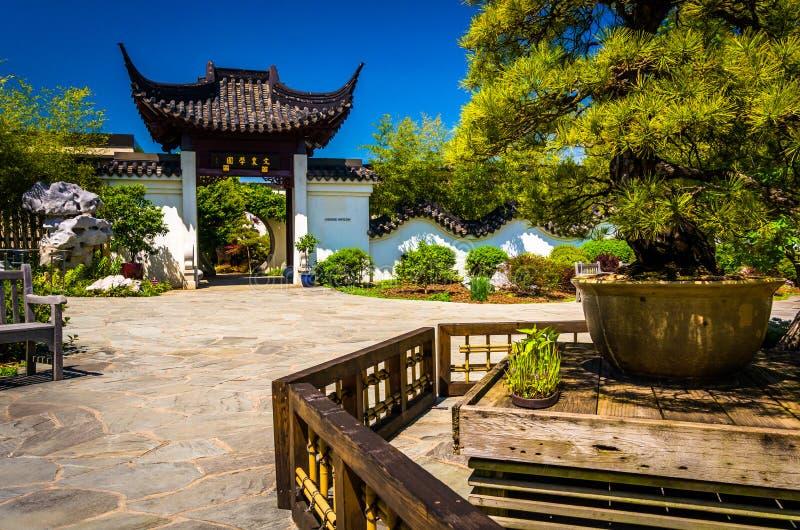 Arbres et l'entrée au pavillon chinois au ressortissant A photo stock