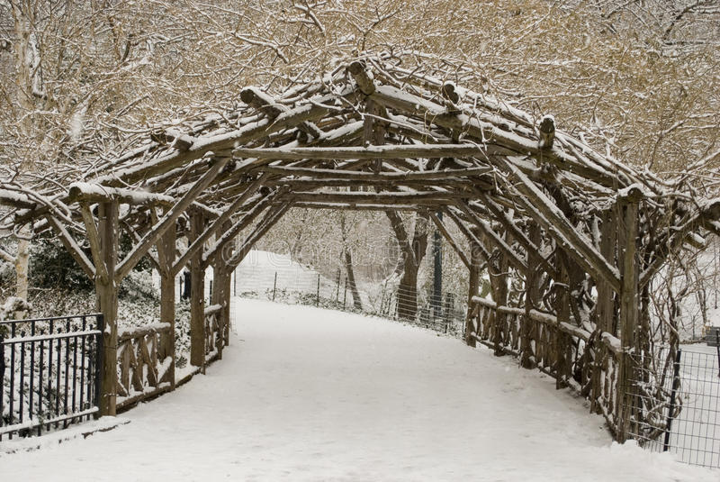 Arbres et pelouse couverts par neige dans Central Park photos stock