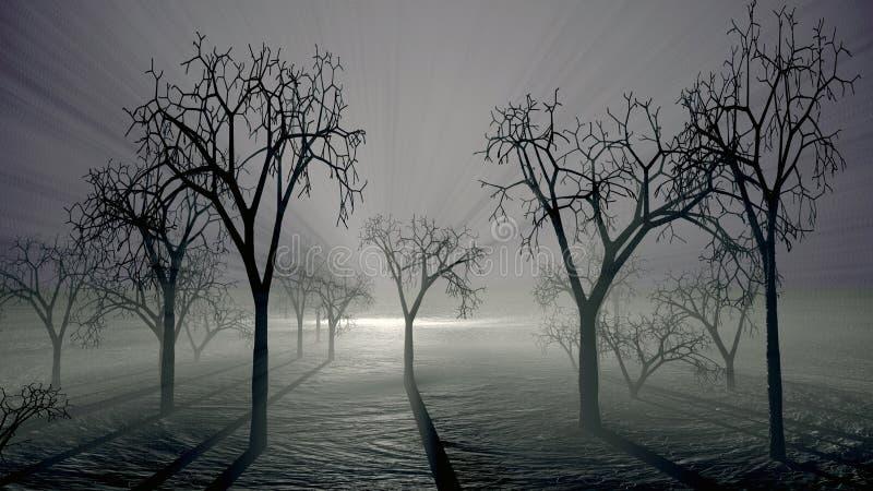 Arbres fantasmagoriques et scène de brouillard photo libre de droits
