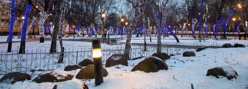 Arbres illuminés aux vacances de Noël la nuit photo libre de droits