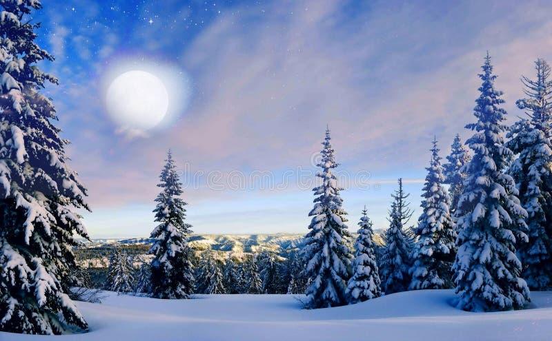Arbres impeccables pendant l'hiver à la pleine lune photographie stock