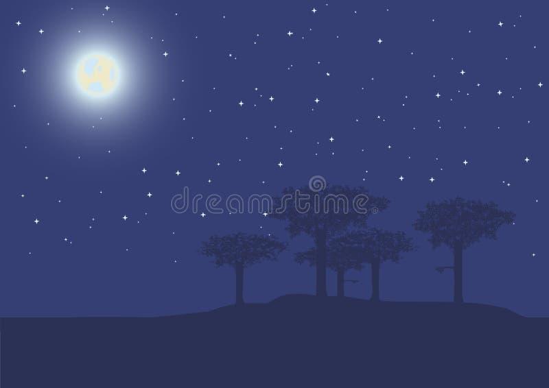 Arbres la nuit illustration stock