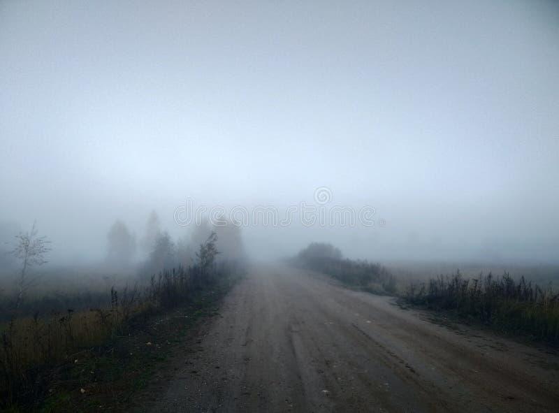 Arbres mystiques de paysage d'automne de brouillard de matin et papier peint de fond naturel de lumière du soleil et de route photos libres de droits