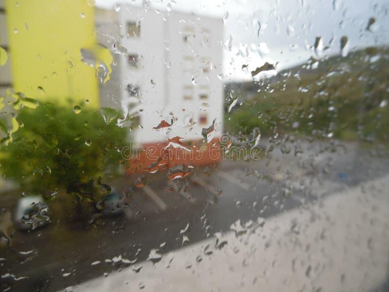 Arbres, pluie, maison ? photo stock
