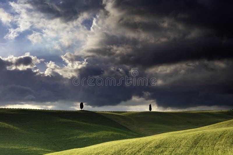 2 arbres solitaires de la Chypre dans les domaines autour de San Quirico dans le €™Orcia de Val Dâ en Toscane avec le ciel orageu photographie stock libre de droits