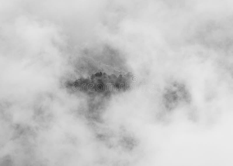 Arbres sur le sommet par des nuages photographie stock