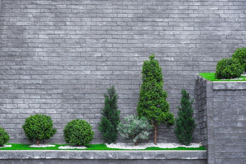 Arbres sur un haut mur de briques photographie stock libre de droits