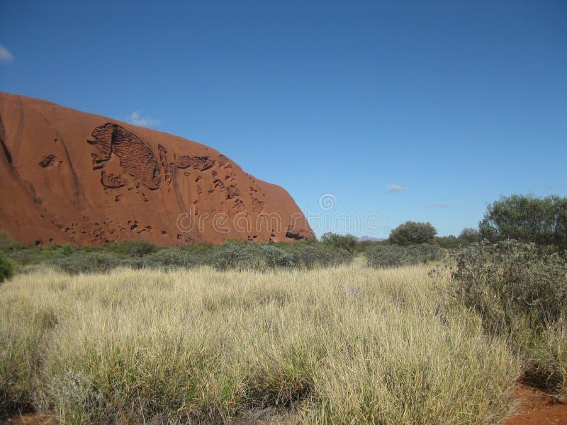 Arbusti, erba ed alberi nella priorità alta, Kata Tjuta nella distanza, passeggiata bassa di Uluru fotografia stock libera da diritti