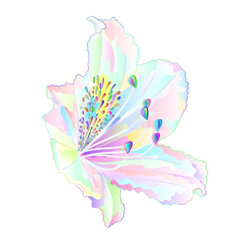 Arbusto claro colorido da montanha da flor do rododendro multi em uma tração editável da mão da ilustração branca do vetor do vin ilustração do vetor