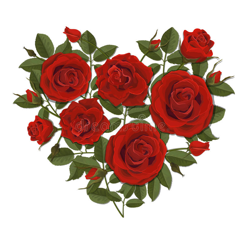 Arbusto color de rosa en forma de corazón stock de ilustración