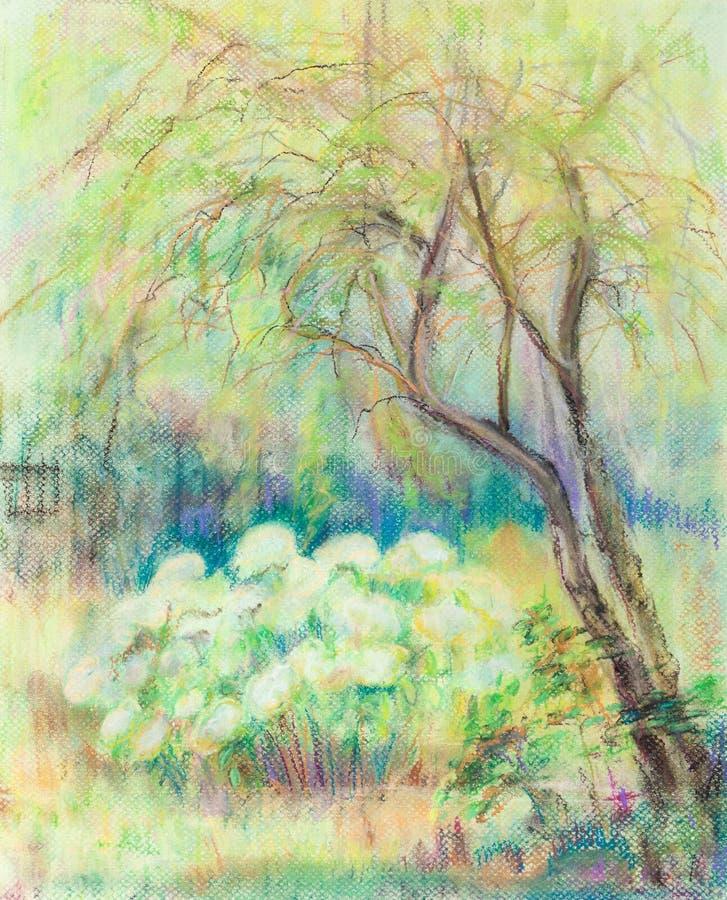 Arbusto de la hortensia ilustración del vector