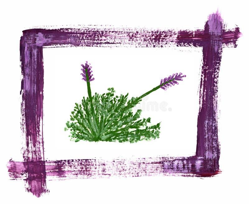 Arbusto de la lavanda pintado con las acuarelas libre illustration