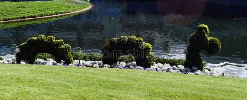 Arbusto de la serpiente al lado del lago fotos de archivo