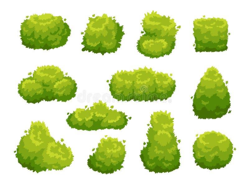 Arbusto do jardim Arbustos verdes da vegetação do jardim Os arbustos dos desenhos animados para decoram o grupo do vetor da paisa ilustração stock