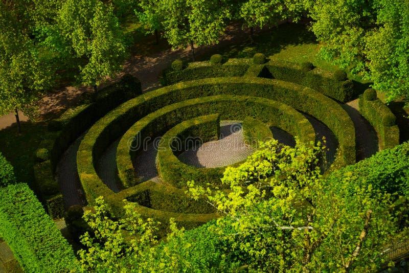 Arbusto do verde do labirinto da forma redonda em Luxemburgo foto de stock